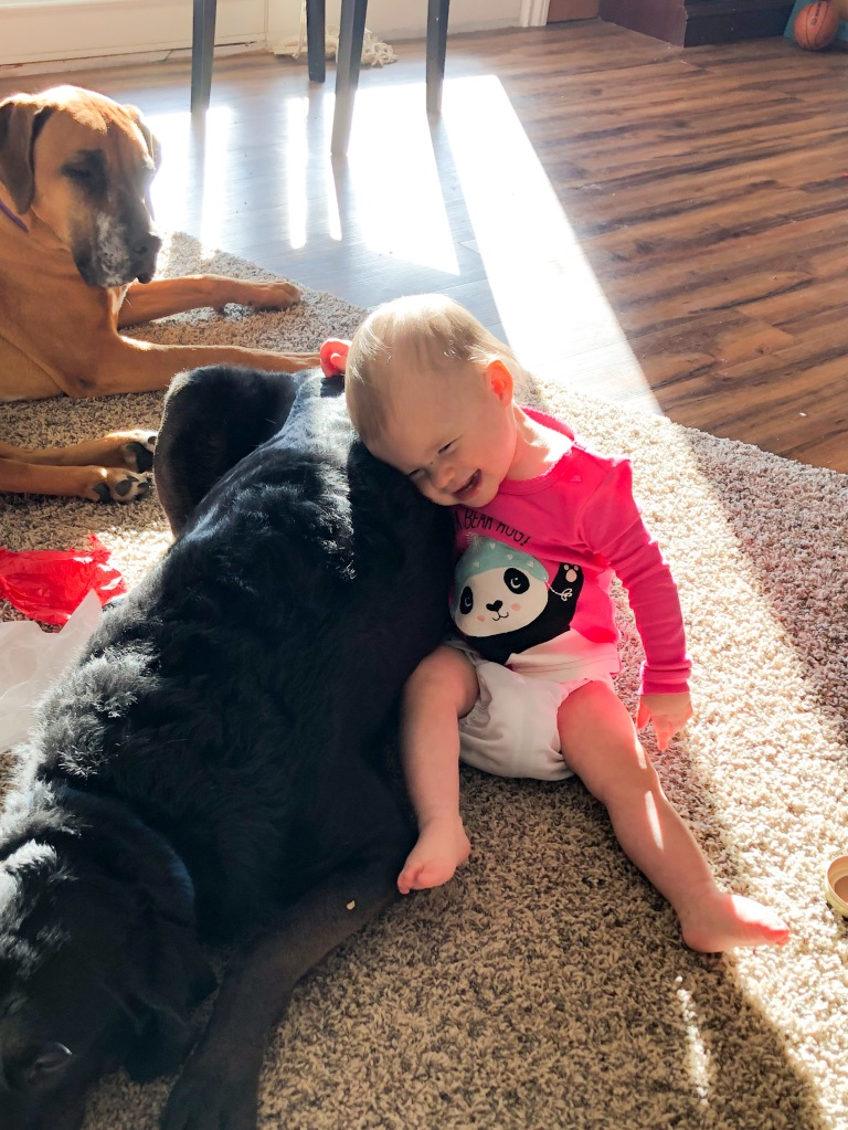 Baby in cloth diaper giving a dog a hug.